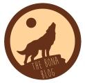 bona blog concept 2